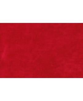 Tela PRETENCIOSA rojo